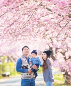 桜と家族写真02